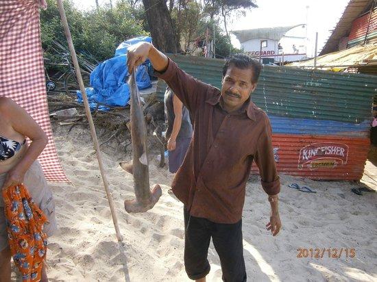 Nanu Resort Goa: Шейк на пляже