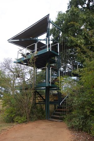 Vuyatela Lodge & Galago Camp: Viewing Tower