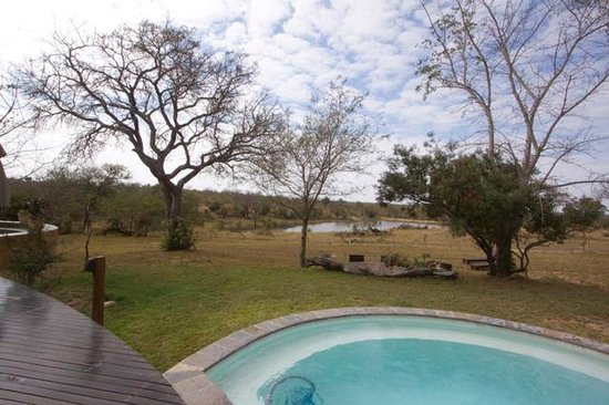 Vuyatela Lodge & Galago Camp: Pool with a View