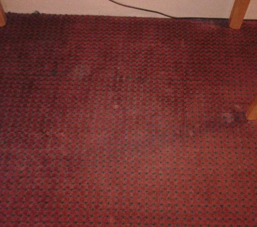 Ramada Columbus Hotel and Conference Center: Filthy carpet