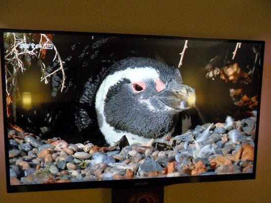 Mercure Bords de Loire Saumur : TV in room