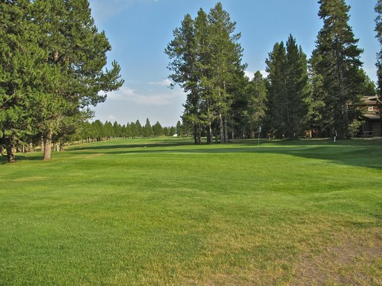 Timbers Condominiums at Island Park: Golf course at Island Park village
