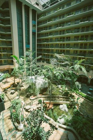 Embassy Suites by Hilton Miami - International Airport: Atrium/breakfast area