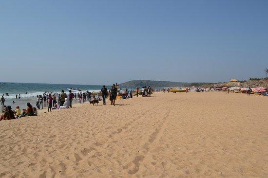 Vagator Beach: Calingute beach