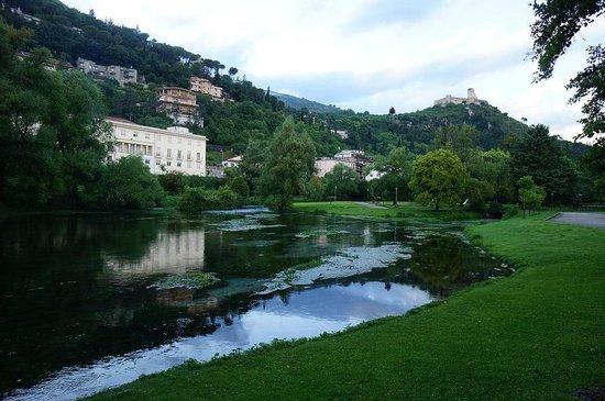 Hotel Alba : Park near by