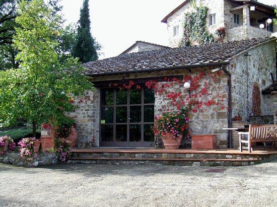 Monte Bernardi 2