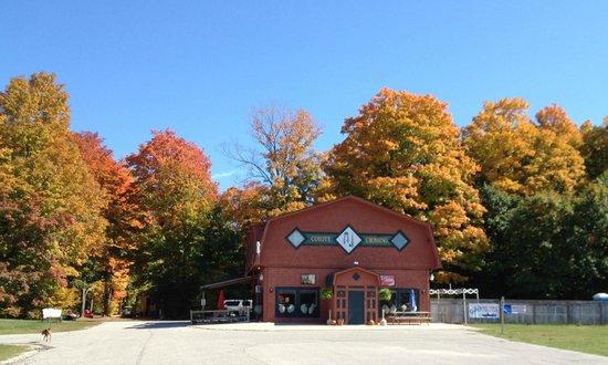 Coyote Crossing Resort: Fall is beautiful in Northern Michigan.