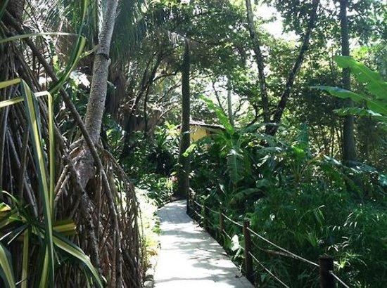 Ylang Ylang Beach Resort: walking to my room
