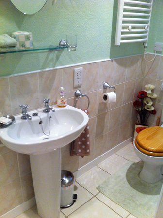 Bridgend House Bed & Breakfast: en suite1double room