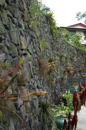 Kona Coffeehouse & Cafe at Honaunau: outside on the patio