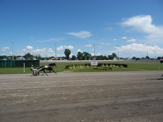 Red Shores Racetrack and Casino : The track at Red Shores