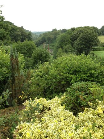 The Warren B&B: View from the breakfast room (02)