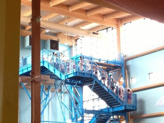 Coco Key Water Resort Fun Slide