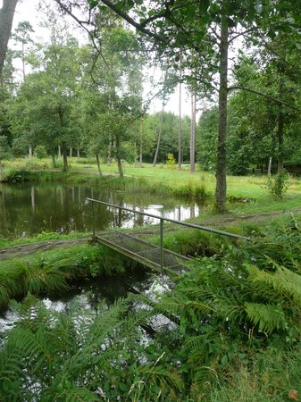 Ma Residence : Fish Ponds at the Domaine Provincial de Mirwart
