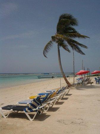Posada Pachamama: Playa cercana al hotel