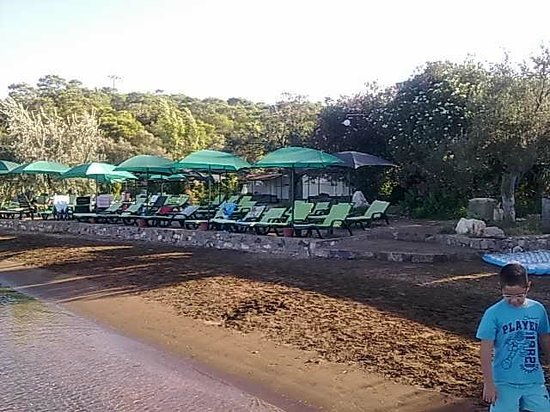 Ada Camping: Beach
