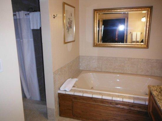 Bavarian Inn: Bathroom