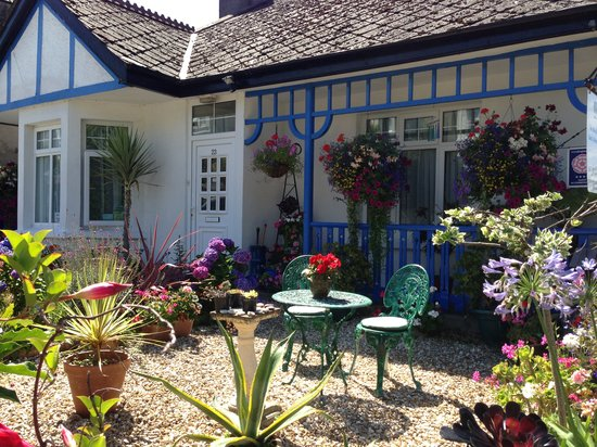The Beech Tree Guest House : Sunny Day