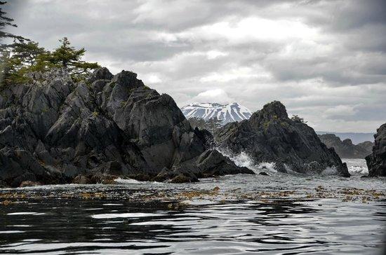 Sitka Secrets : dans la baie de Sitka
