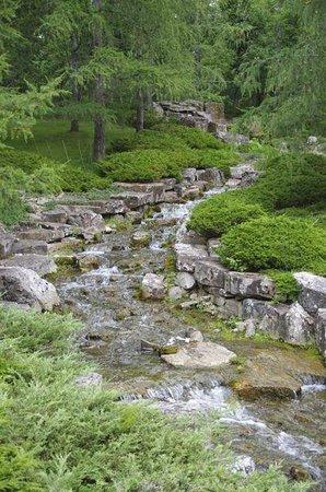 Devonian Botanic Garden: Japanese garden