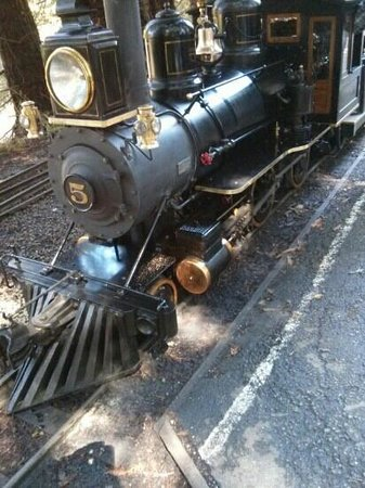 Redwood Valley Railway