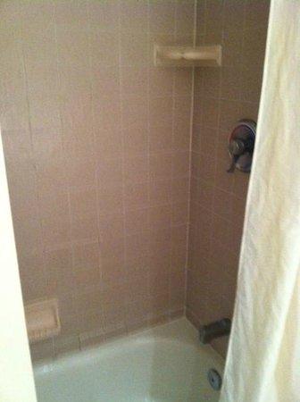 Golden Inn Hotel: Decent Shower