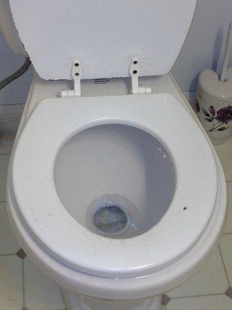 Sea Breeze Motel: toilet seat