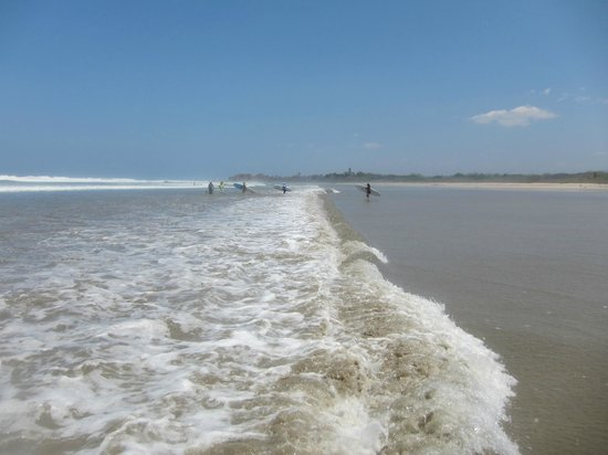 Nosara Tico Surf School : amazing waves in nosara!