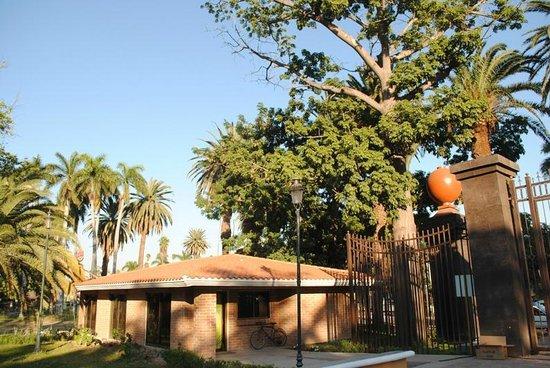 Jardin Botanico Benjamin F. Johnston: Oficina, se encuentra en la entrada Principal del Parque Sinaloa, sobre el blvd. Rosales # 750 S