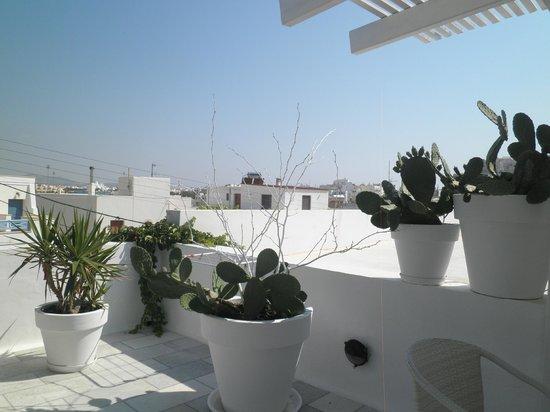 Adriani Hotel: Terrazza
