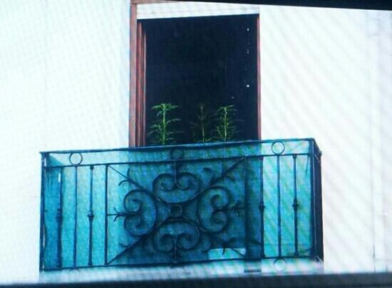 """Abba Santander Hotel: Las """"flores"""" del vecino"""