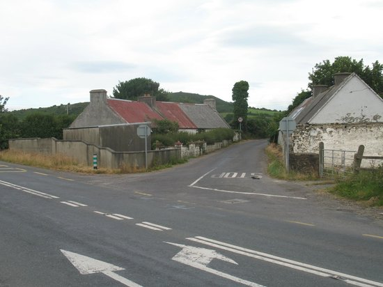 Dromin Farmhouse : The road towards the farmhouse.