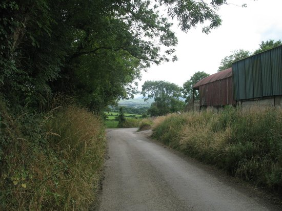 Dromin Farmhouse : Road from the farmhouse, (drive carefully).