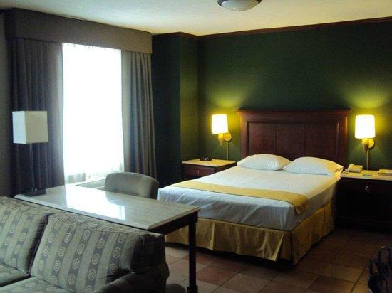 Hotel & Suites El Picacho: Habitacion Sencilla