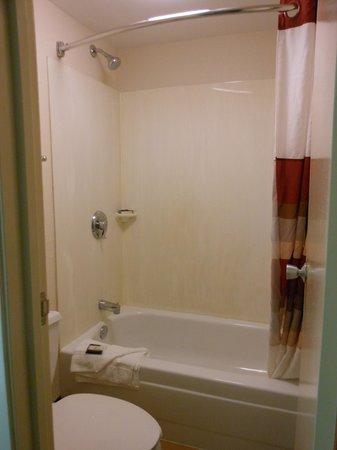 Red Roof Inn Virginia Beach: Bathroom