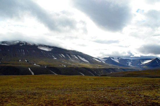 Svalbard Wildlife Expeditions: View from the top of the mountain