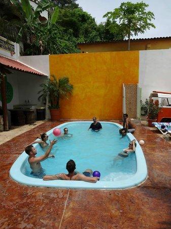 The Amazing Hostel Sayulita: en la alberca