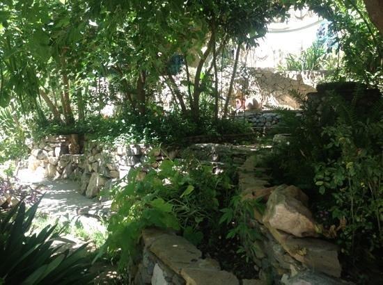 Hotel Molino: crazy awsome garden!!