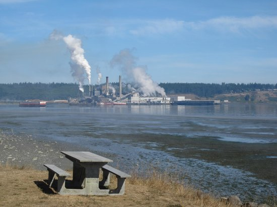 Fort Townsend State Park: Not the prettiest view from the beach ...