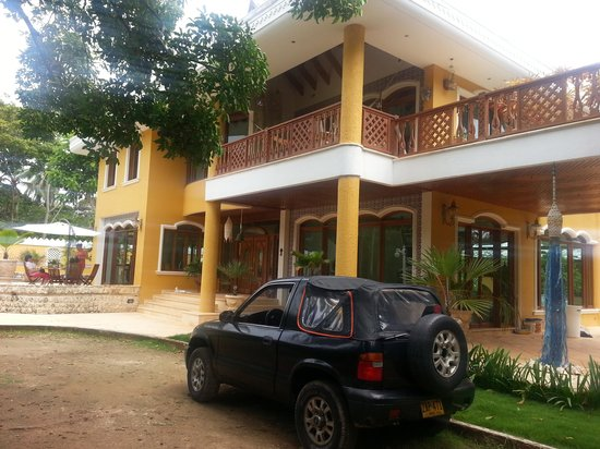 Casa las Palmas Hotel Boutique: el hotel