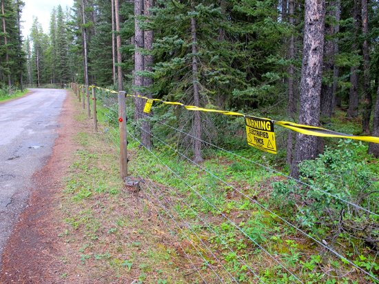 Lake Louise Campground: Electric Fence