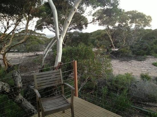 Eucla Motor Hotel: view from room 10 the executive room