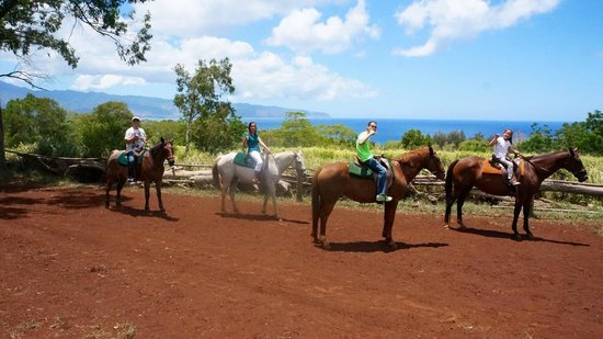 Happy Trails Hawaii: Beautiful view