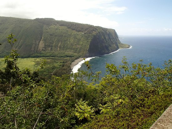 Waipi'o Valley Wagon Tours: A view of the ocean at the top of the scenic point