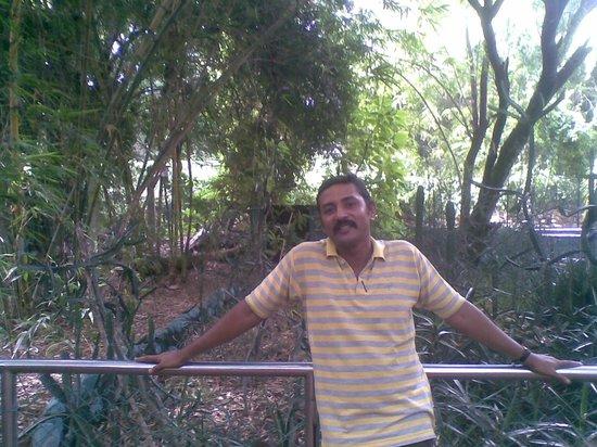 Guindy Snake Park: Aaq inside the park