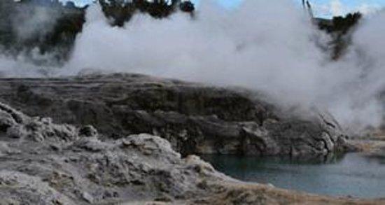 Scott Tours: Pohutu Geyser - Te Puia (Rotorua)