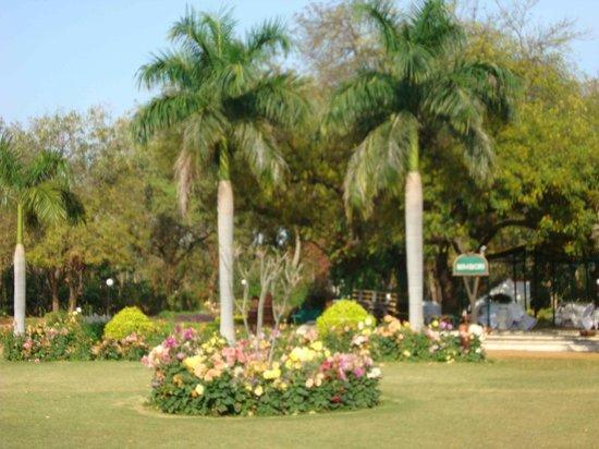 Hotel Chandela: Jardin del hotel
