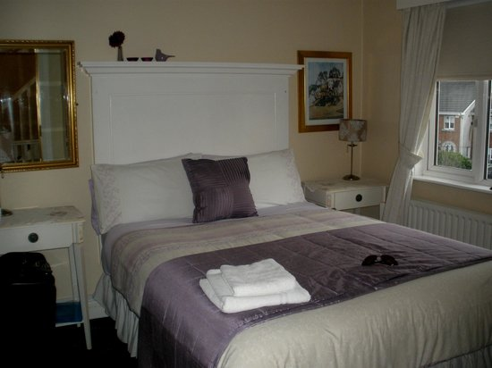 Annandale Bed & Breakfast: love the purple!