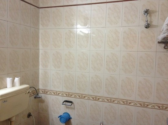 Hotel Ganga Ratan: バスルーム