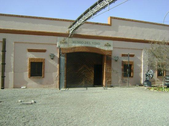 Museo del vino: Entrada
